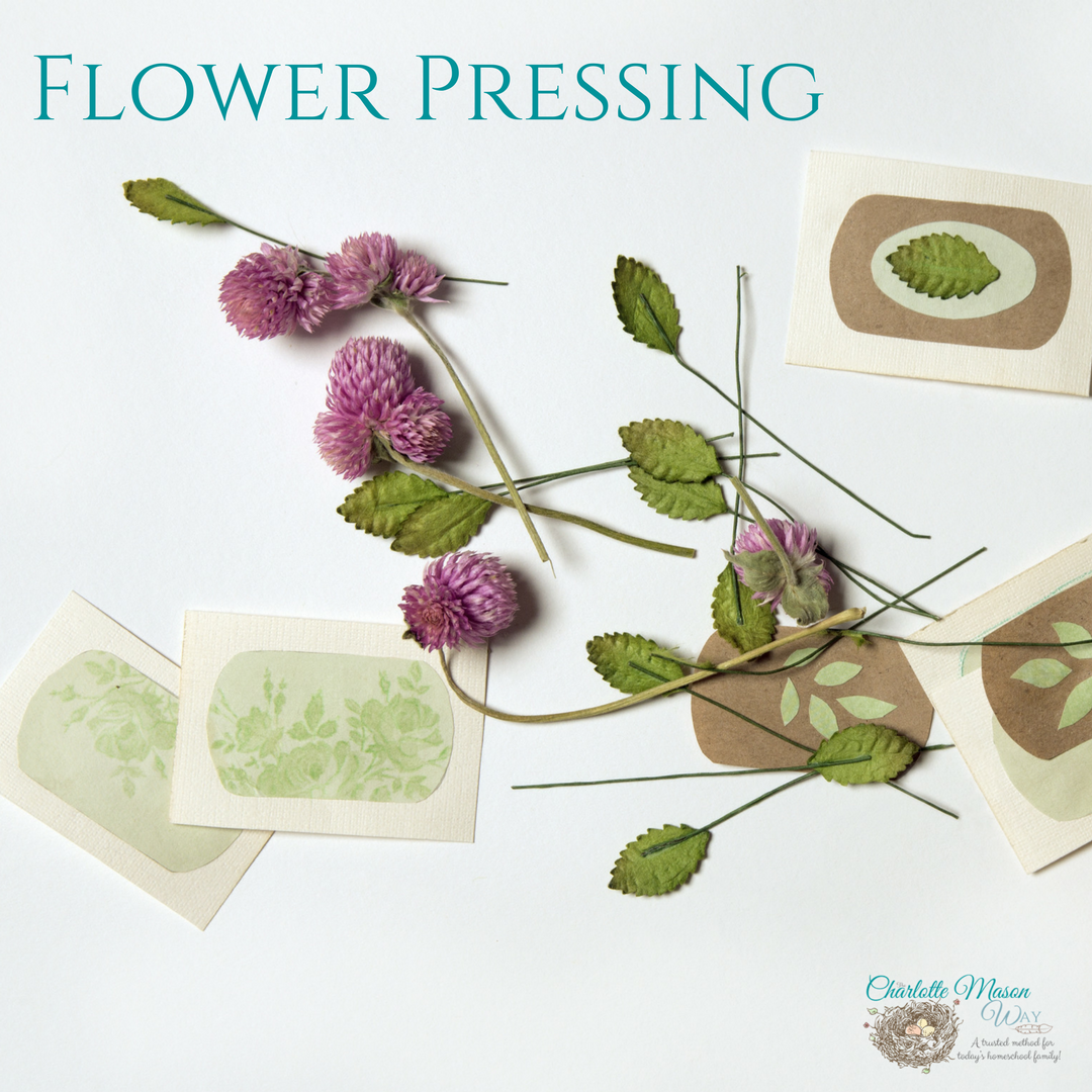 Flower Pressing Handicraft The Charlotte Mason Way